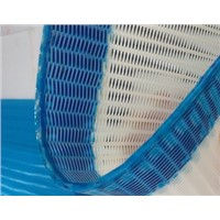 Polyester Woven Dryer Screen/Fabric