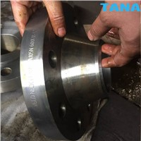 DIN/ANSI Carbon Steel A105 Welding Neck WN Flange