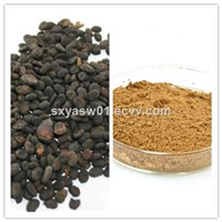Natural 10:1 Malaytea Scurfpea Fruit Extract