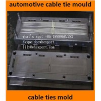 Automotive Auto Car Plastic Nylon Zip Seal Cable Ties Injection Moulds Mould Molds