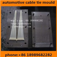 High Quality Plastic Injection Moulds Molds Mould for Nylon Cable Ties