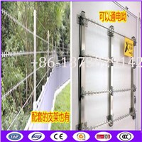 BTO-22 3 Meter Long Stainless Steel 304 Straight Cut Razor Barbed Wire with Elecricity Wire