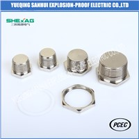 Hexagon Head Metal Stopping Plug IP65