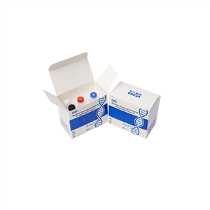 BGI Real-Time Fluorescent RT-PCR Kit by BGI(1 Box of 20 Pieces)