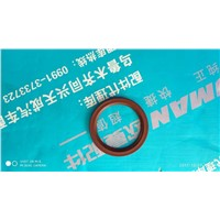 Oil seal for through shaft