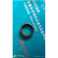 Combined oil seal of through shaft