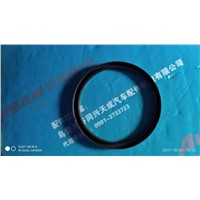Shaft Seal Ring (SD190*220*15)