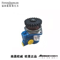 Steering Oil Pump Assembly (Blue Engine, Double, No Safety Valve)