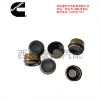Valve Stem Oil Seal Xi'an Kangxu Auto Parts