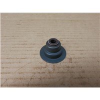 Inlet valve oil seal