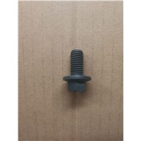 Hexagonal head flange nut screw