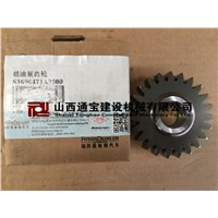 Fuel pump gear