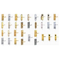 Intelligent Locks(IC/RF/TM card locks)