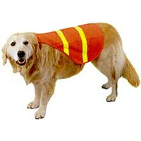 high visibility clothing for pets