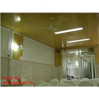 PVC wall & ceiling cover