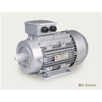 Ms series 3 phase motor