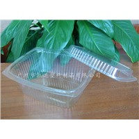 Plastic Food Container/Take away  container