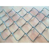 Chain link fence,link fence,Galvanized wire mesh,D