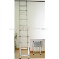 Telescopic_Extension_Aluminum_Ladder