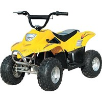ATV with 450W--Electric ATV