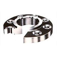 Carbon/Stainless Flange