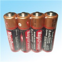 AA Size (R6, UM-3) Dry Batteries