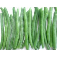 IQF whole green bean,