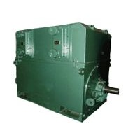 Medium-size High-voltage Squirrel-cage/ Wound Three-phase Induction Motors