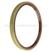Skeleton Structure Oil Seal