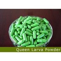 Queen Larva Powder