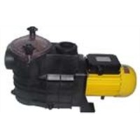 sea water pump &swimming pool pump