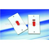 45A 1 Gang Double Pole Switch(With Neon)