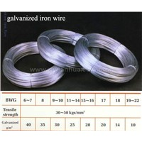 GALVANIZED IRON WIRE-1