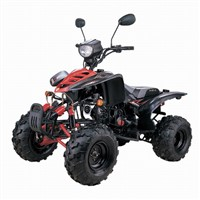 New Fashionable 110cc EEC ATV with Double A-arm Swing