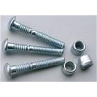 Steel and stainless rivet