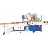 Household Paper Towel Packing Machine (ZB300)