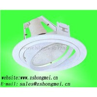Metal halide downlight