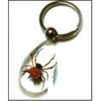 Insect amber crafts-Keychain