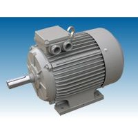 ST low-noise electric motor