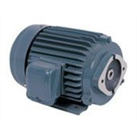 YT series oil pump exclusive-use motor