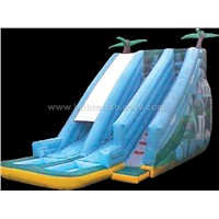 Inflatable Fun Slides