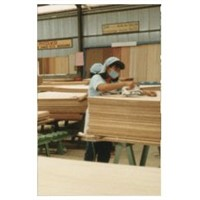 plywood ,black film faced plywood  skype:ardiswei