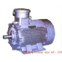 Explosion-Proof Three Phase Induction Motor (YB2)