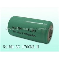sales D NI-MH Rechargeable Battery