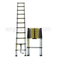 telescopic ladder