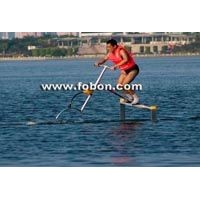 Waterbird water bird hydrofoil wings