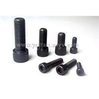 Professional Manufacturer of Bolt & Nuts