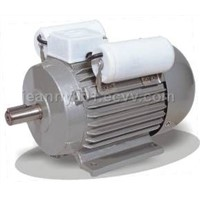YL series single phase heavy duty induction motor