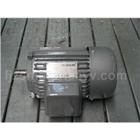Three-Phase Induction Motor (Y801-2)
