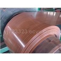 prepainted steel coil with wood color